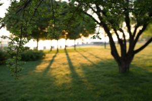 Image credit: AntGor/Shutterstock.com