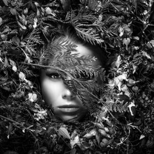 Image credit: InnerVisionArt/Shutterstock.com