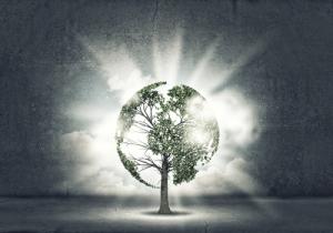 Image credit: sergey nivens/Shutterstock.com