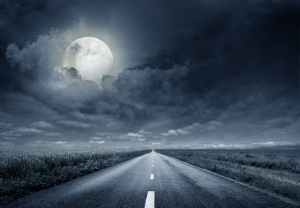 Image credit: Krivosheev Vitaly/Shutterstock.com