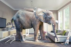 Image credit: Zastolskly Victor/Shutterstock.com